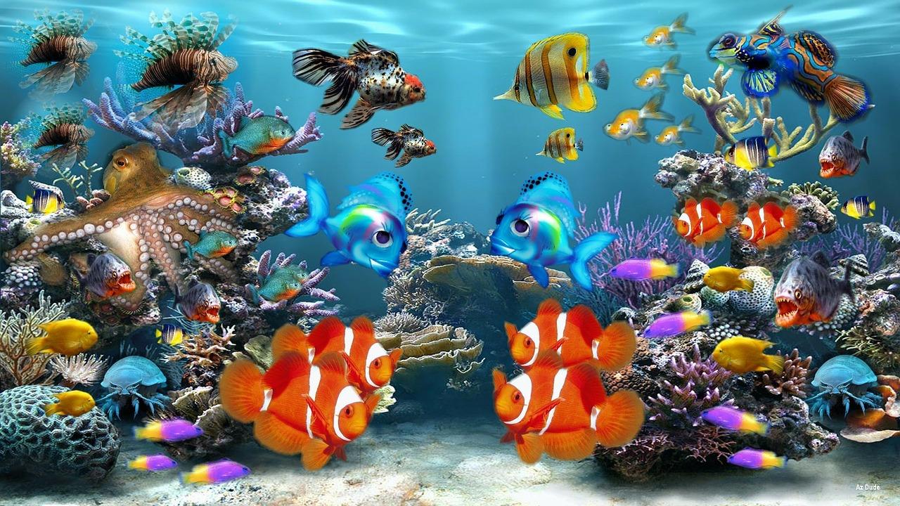 Las especies de peces más comunes en nuestras peceras y algunos de sus cuidados